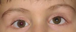 pediatrici_39b