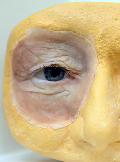 An eye epithesis and an ear epithesis are seen at the Berlin Centre for Artificial Facial Parts (BZkG) at Charite in Berlin, Germany, 07 Ocotber 2014. Photo: Britta Pedersen/dpa